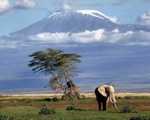kilimanjaro_128